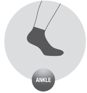 ankle-accapi-1